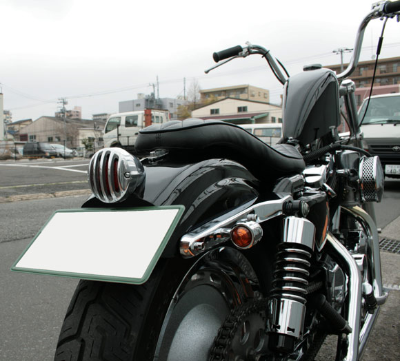 hasimotosan.jpg5.jpg